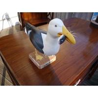 Oiseau marin Goeland
